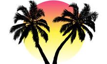 Sunset And Silhouette Of Palm Trees, Vector Art Illustration.