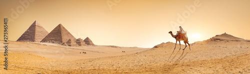 In de dag Kameel Desert and pyramids