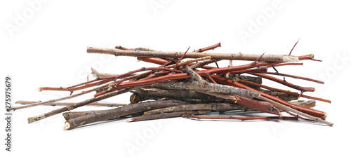 Foto op Canvas Brandhout textuur Dry branches, twigs isolated on white background