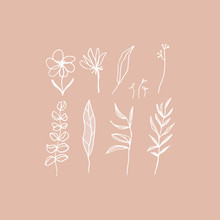 Hand Drawn Floral Elements Set In White And Pink. Cozy Pastel Colors. Flowers, Brunches, Leaves. Vector Illustration.