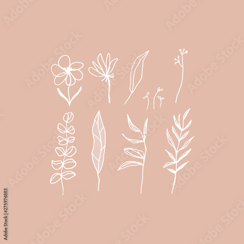 Fototapety, obrazy: Hand drawn floral elements set in white and pink. Cozy pastel colors. Flowers, brunches, leaves. Vector illustration.