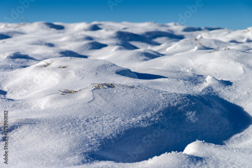 Fototapety, obrazy: Lovely snowdrifts, formed by wind with a little bit of gras still showing through.