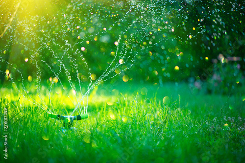 Poster Green Garden, Grass Watering. Smart garden activated with full automatic sprinkler irrigation system working in a green park, watering lawn, flowers and trees. sprinkler head watering. Gardening concept