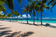 Palm Trees On A Beautiful, Quiet Tropical Sandy Beach On A Tropical Island (White Beach, Boracay)