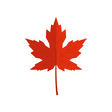 Red Vector Maple Leaf In Flat Style