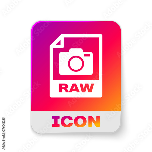 White RAW file document icon  Download raw button icon isolated on