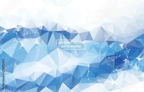 Obraz na plátně  Abstract Whlite light Geometric Polygonal background molecule and communication
