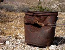 An Old Rusted Gallon Size Tin ...