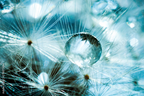 Beautiful dew drops on a dandelion seed. Macro. Beautiful soft light blue and violet background. Selective focus.