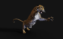 3d Illustration Leopard Isolat...