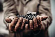 Coal In Miner Holds. Concept Industry Mining