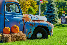 Pumpkin Patch. Fresh Pumpkins On A Farm Field Near Very Old Truck. Rural Landscape, Connecticut, USA