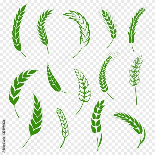 Fotografia  Set of simple green wheats ears icons and wheat design elements for beer, organic or local farm fresh food, bakery themed wheat design, grain, beer elements, rye simple