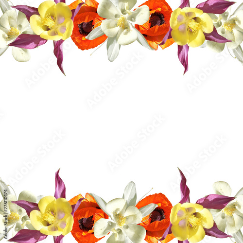Photo Beautiful floral background of aquilegia and poppy. Isolated