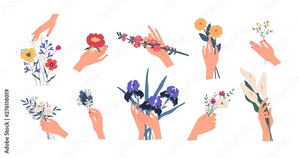 Fototapety, obrazy: Collection of hands holding bouquets or bunches of blooming flowers. Bundle of floral decorative design elements isolated on white background. Set of elegant summer gifts. Flat vector illustration.