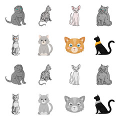 Vector design of pet and sphynx sign. Collection of pet and fun stock symbol for web.