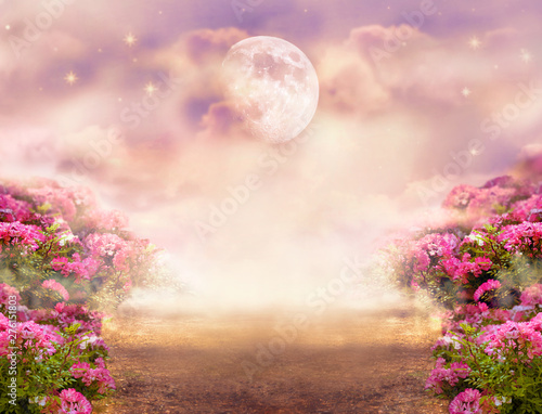 Fantasy photo background with rose field, dramatic sky with moon and stars, misty path leading across hills to mysterious glow. Tranquil evening scene. Photo of moon is taken by me with my camera. Wall mural