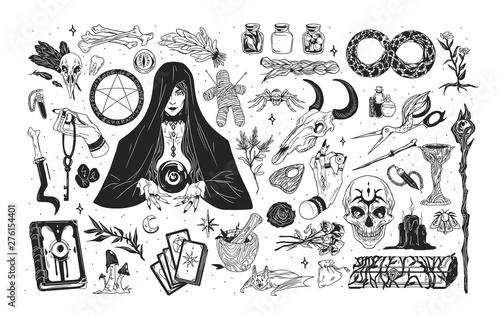 Fototapeta Witchcraft set - witch or enchantress and mystical items for wizardry, enchantment, astrology and clairvoyance hand drawn with black contour lines on white background. Monochrome vector illustration. obraz