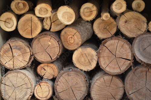 Recess Fitting Firewood texture Texture of sawn logs. Natural neatly folded logs, flat lay