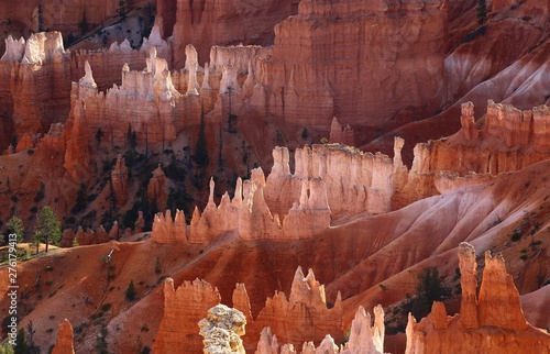 Bryce Canyon Utha USA Canvas Print