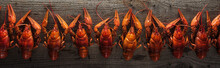 Panoramic Shot Of Red Lobsters On Wooden Surface