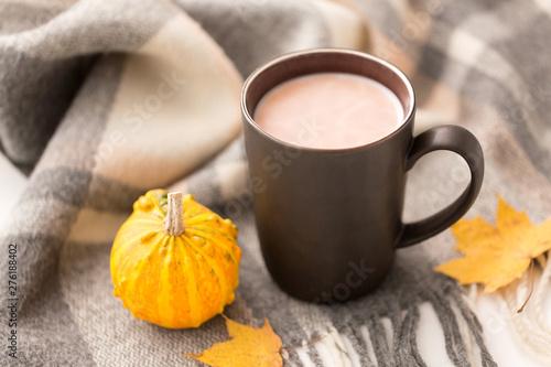 Foto auf Gartenposter Schokolade drinks and season concept - cup of hot chocolate, autumn leaves, pumpkin and warm blanket on white background