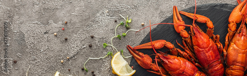panoramic shot of black plate with red lobsters near lemon slices, pepper and gr Canvas Print