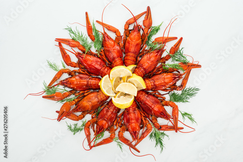 Poster Ecole de Danse top view of red lobsters, lemon slices and green herbs on white background