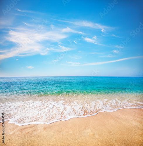 Fotografiet  sandy beach and tropical sea