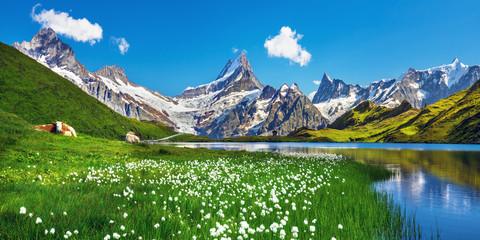 Slikovit pogled na bernski lanac iznad jezera Bachalpsee. Popularna turistička atrakcija. Mjesto mjesto Švicarske alpe, dolina Grindelwald, Europa.