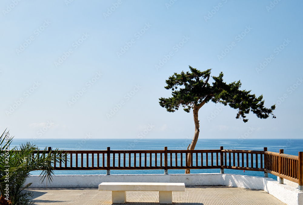 Fototapety, obrazy: Idyllic scenery lonely tropical tree on Mediterranean sea horizon blue waters background, fenced place with white bench, Cabo Roig, Spain