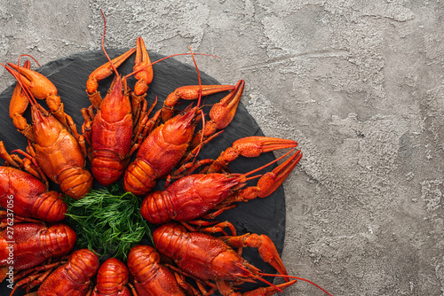 top view of black plate with red lobsters and green herbs on grey textured surfa Canvas Print