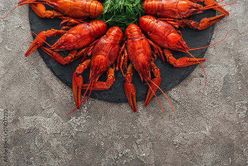 Photo  top view of black plate with red lobsters and green herbs on grey textured surfa
