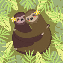 A Couple Of Sloths Hugging. Gr...