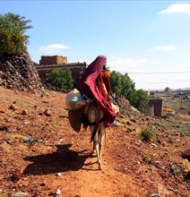 A Countryside Woman On A Donkey Returns To Her Village