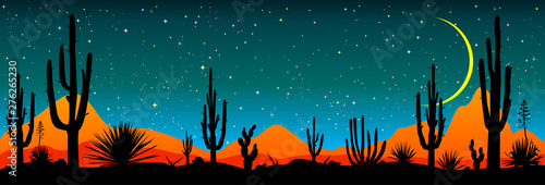 Cadres-photo bureau Bleu jean Starry night over the Mexican desert.Desert, cacti, stars night. Starry night over the Mexican desert. Silhouettes of stones, cacti and plants. Desert landscape with cacti. Stony desert