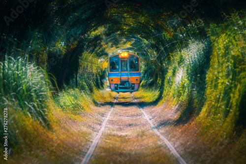 Train running in Natural tunnel trees. / Train running pass through natural tree tunnel on the railway at ,Bangkok,Thailand.
