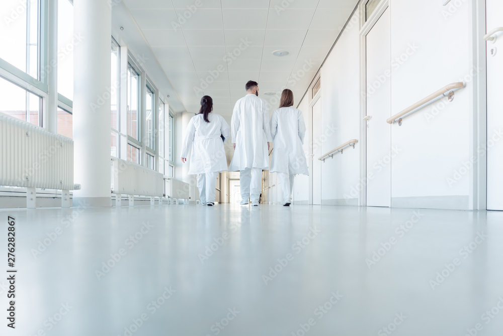Fototapety, obrazy: Three doctors walking down a corridor in hospital
