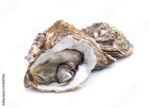 Canvastavla Fresh  oyster on white background