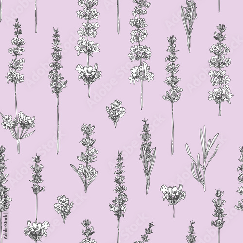 Canvas Print Semless pattern with hand drawn sketch of cute Lavender flower isolated on pink background