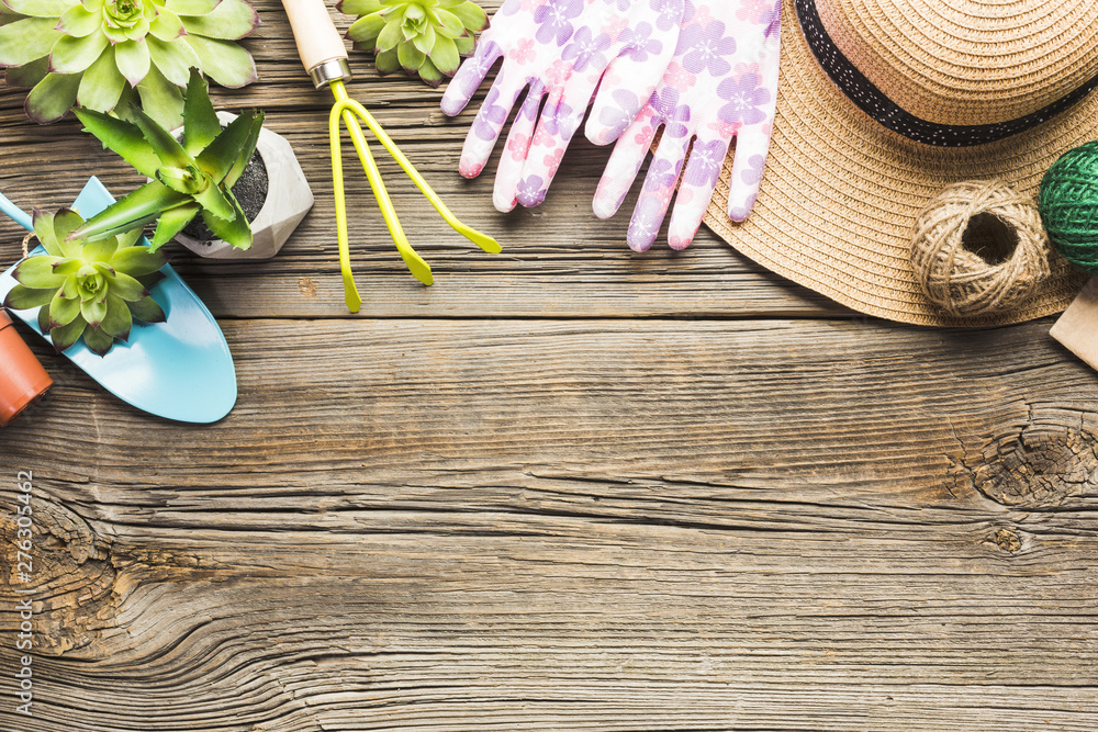 Fototapety, obrazy: Top view of gardening tools on the wooden floor
