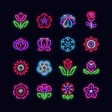 Flowers Neon Vector Icons