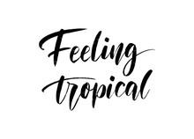 Vector Hand Drawn Summer Inscription Feeling Tropical.