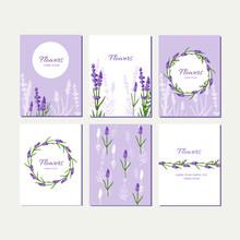 Doodle Cards Set With Lavender...