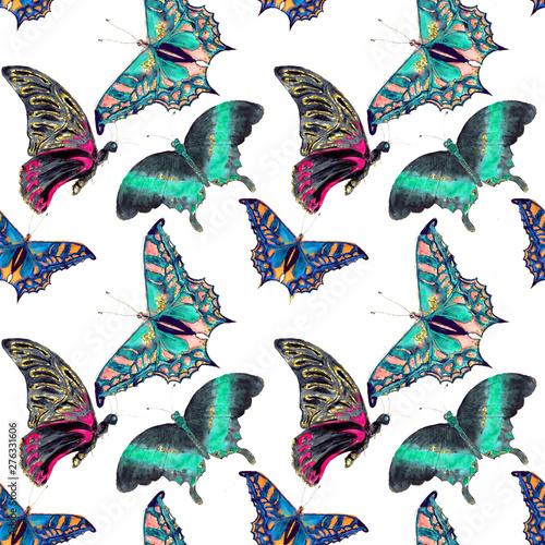 Hawaiian Tropical jungle colorful watercolor hand drawn butterflies seamless pat Canvas Print