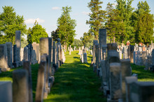 Graves At A Cemetery With Green Grass And Trees