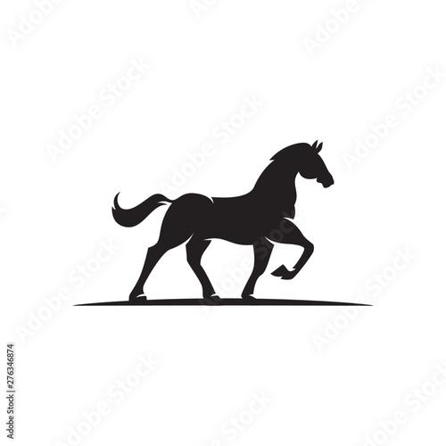 Cuadros en Lienzo dark horse logo