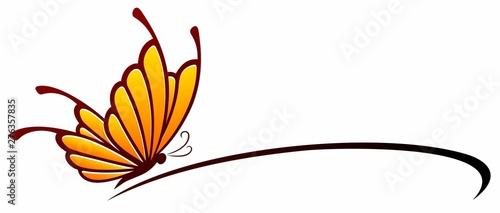 Obraz na plátně  A symbol of the stylized butterfly.