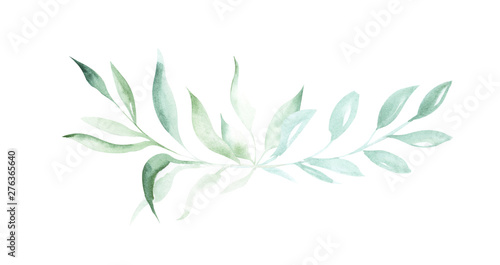 Illustration of watercolor drawing decorative elements of green plants and leaves in the form of frames on an isolated white background.