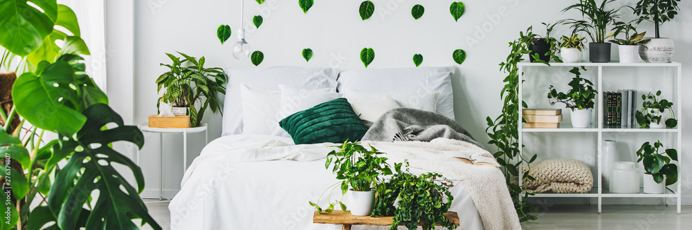 Fototapety, obrazy: Panoramic view of white and green bedroom with king size bed and urban jungle